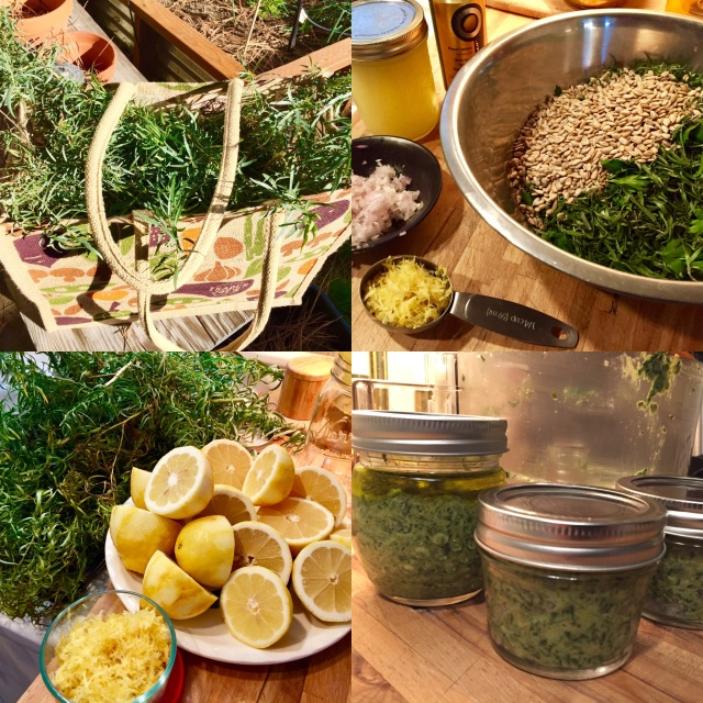 lemon-tarragon-pesto